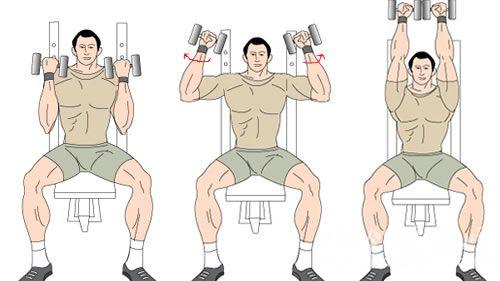 三角肌锻炼_三角肌中束锻炼方法总结