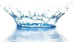 健身效果停滞不前,也许只是因为水。