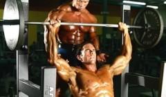 每周做三次全身训练更具成效