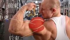 详解哑铃肩上推举,帮您练出宽阔圆浑的肩膀.