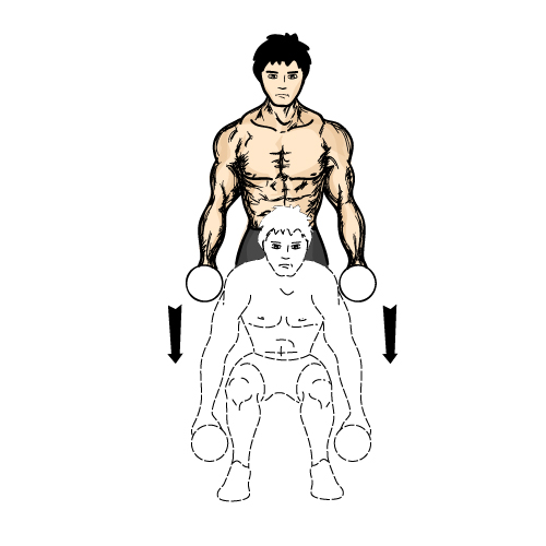 yb亚博体育网页版登录深蹲-下身肌肉锻炼动作的不二选择