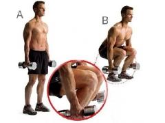 二十六、腿部训练基础知识,让你不再忽视腿部肌肉的锻炼.