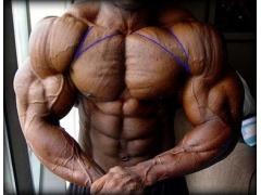 详细说说在家u乐娱乐youle88怎么打造胸肌中缝?
