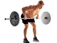 二十八、背部训练基础知识,什么动作锻炼背部肌肉?