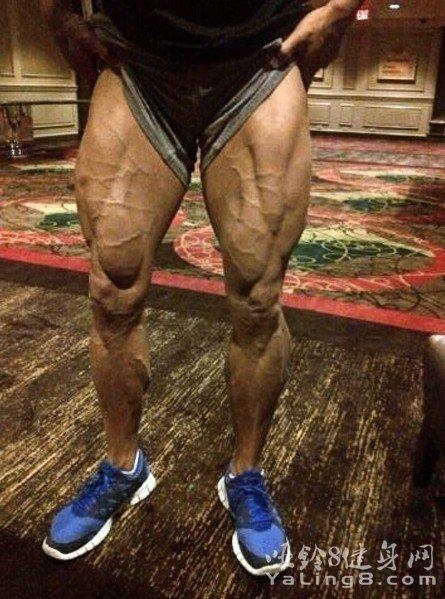 每日资讯_20张腿部肌肉图片欣赏