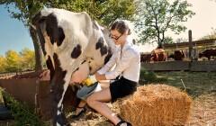 增肌法门:酪蛋白与乳清蛋白的区别