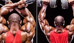 关于增肌―矮个子应该更有信心