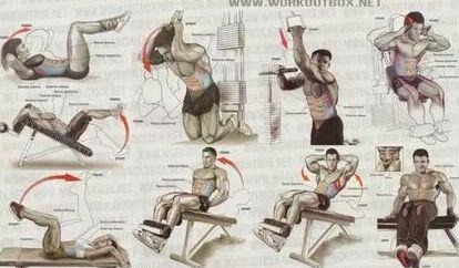 全身肌肉动作训练图解就这几张,一点不难
