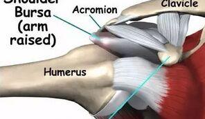 肩部肌肉疼痛的原因,如何缓解肩部疼痛