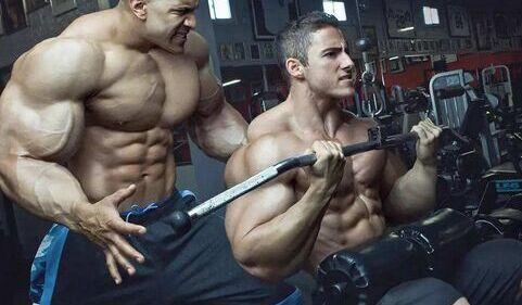 增肌过程中的4个最愚蠢饮食误区