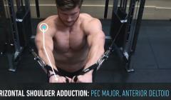 练胸大肌、胸大肌中缝怎么练?这个动作一定要练