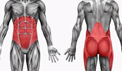 强化核心肌群对自身有什么好处